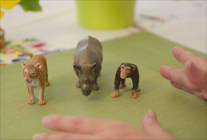voila montessori discover language three-period lesson with animals
