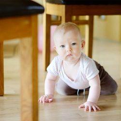 voila montessori the parenting school understanding your child
